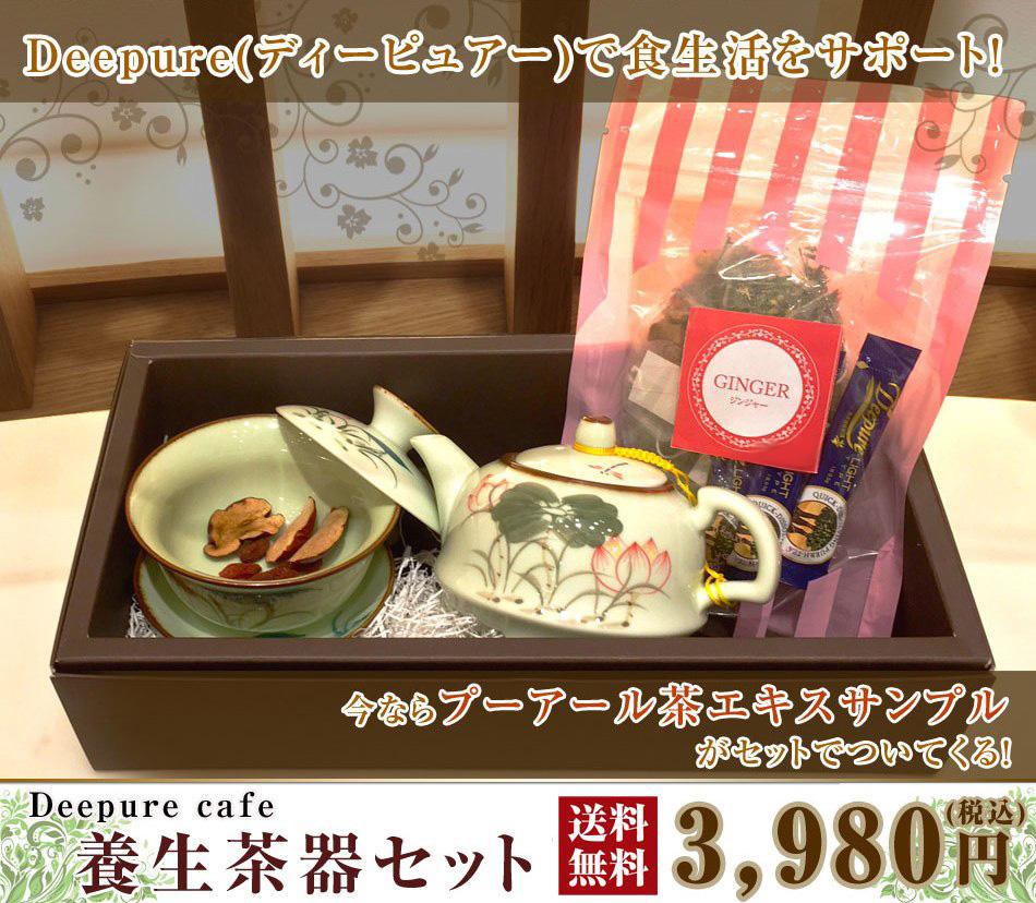 養生茶器セット