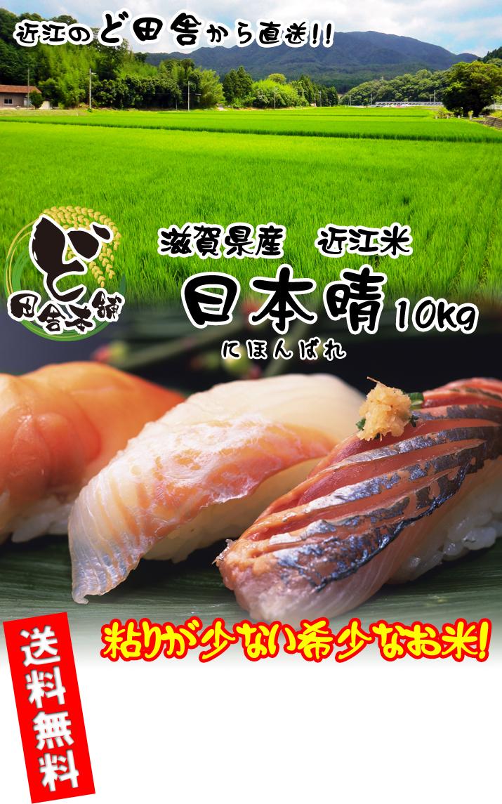 滋賀県産 近江米 日本晴 10kg