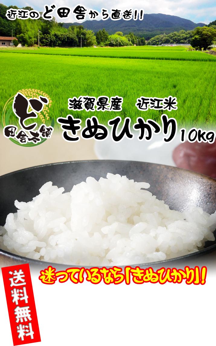 滋賀県産 近江米きぬひかり 10kg