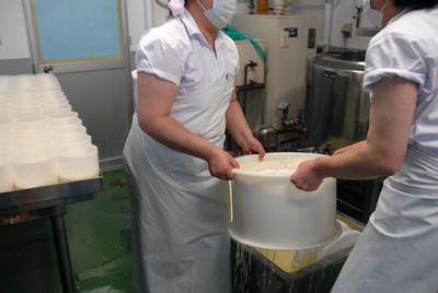 大友チーズ工房 チーズ作り