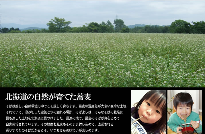 北海道の自然が育てた蕎麦