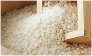 きれいな米