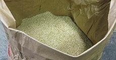 新潟産コシヒカリはきれいなお米
