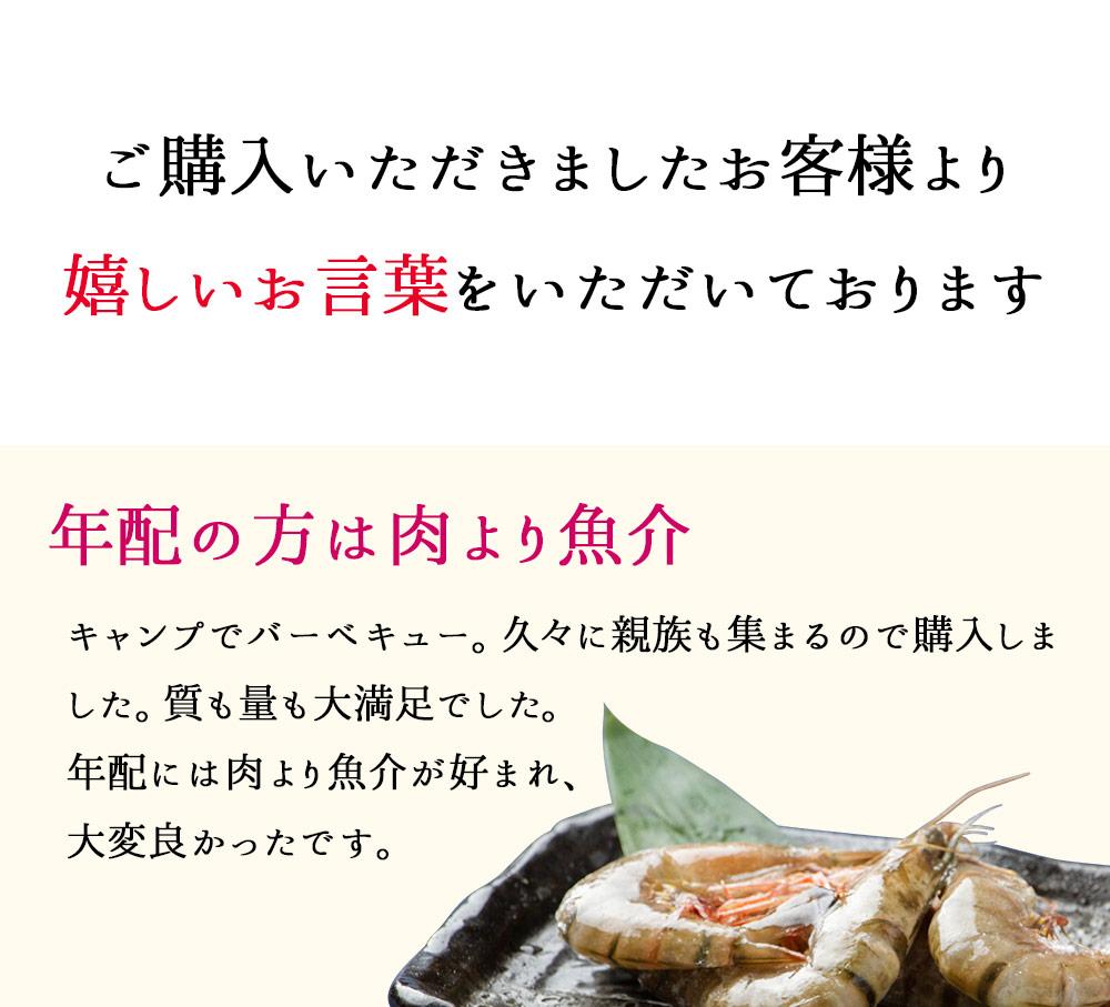 海鮮 バーベキューセット BBQセット 魚介 ギフト