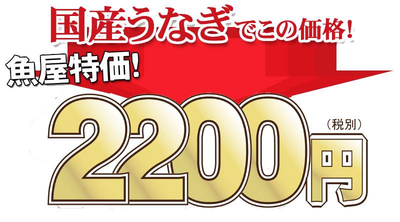 税込1980円