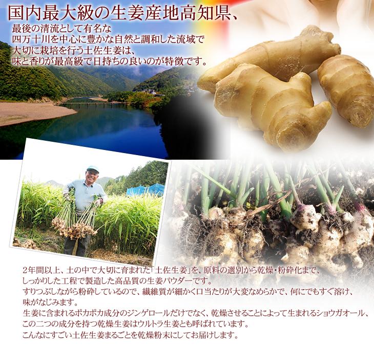 国内最大の生姜産地高知県、