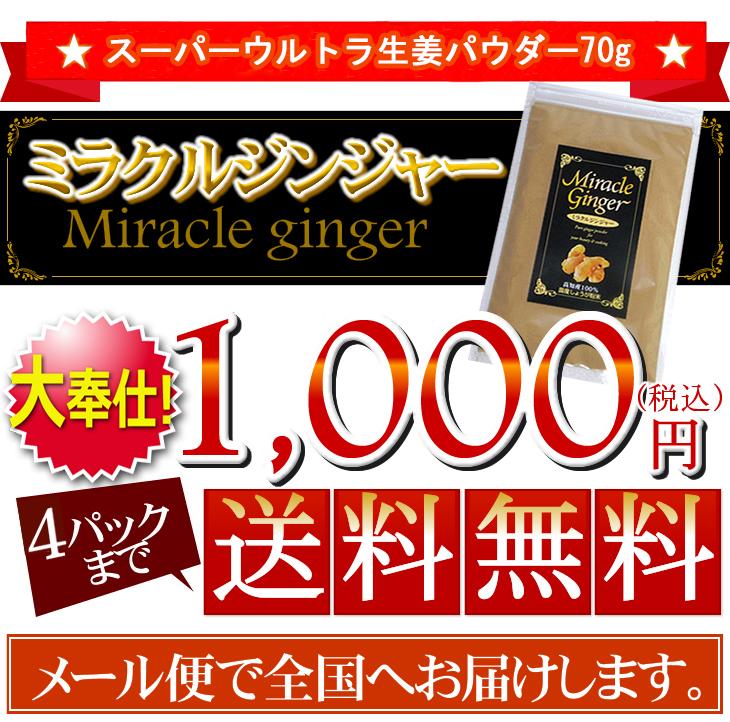 楽天最安値に挑戦します!1000円 4パックまで送料無料