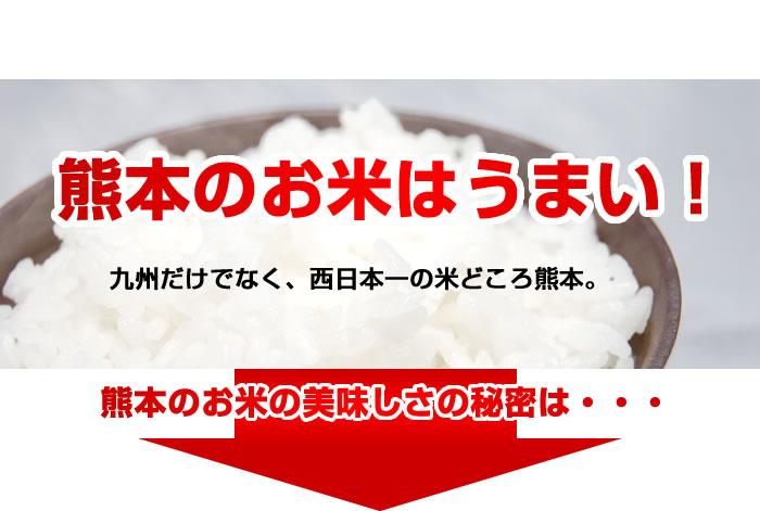 熊本のお米はうまい 九州だけではなく西日本一の米どころ熊本