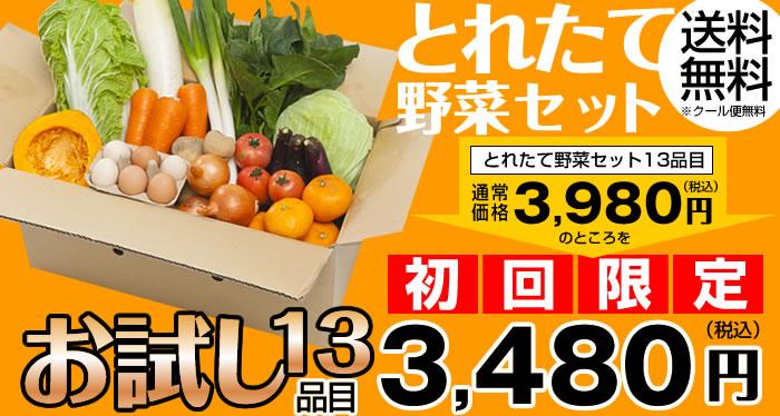 とれたて野菜セットお試し13品目 通常3,980円が初回限定3,480円