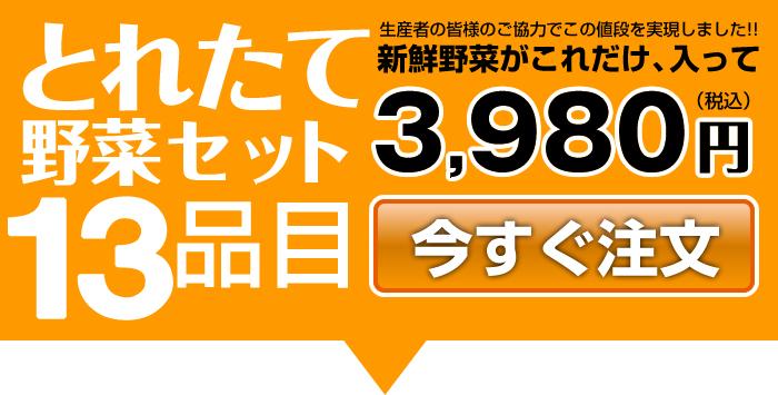 とれたて野菜セット13品目 3,980円/お得で便利な定期便あります!!