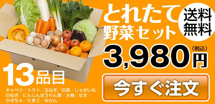 とれたて野菜セット3,980円(送料無料)