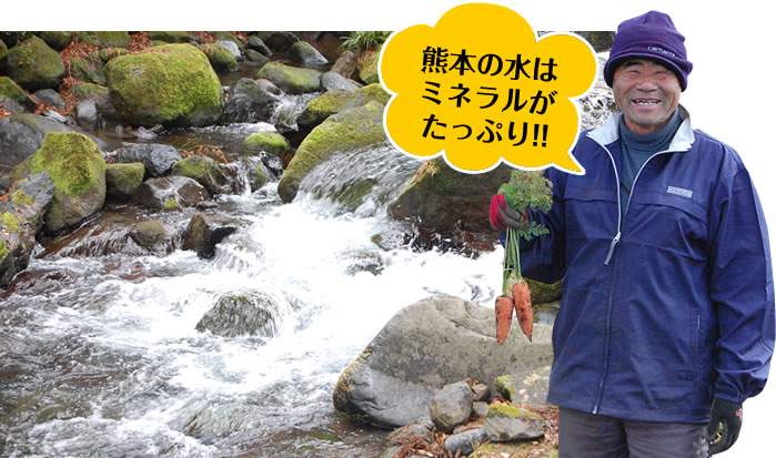 熊本の水はミネラルがたっぷり!!