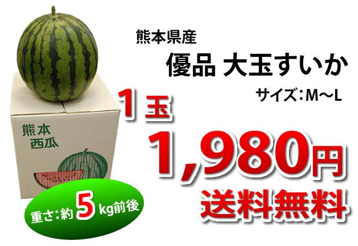 1玉1,980円