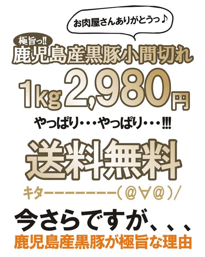 2,980円やっぱり送料無料!
