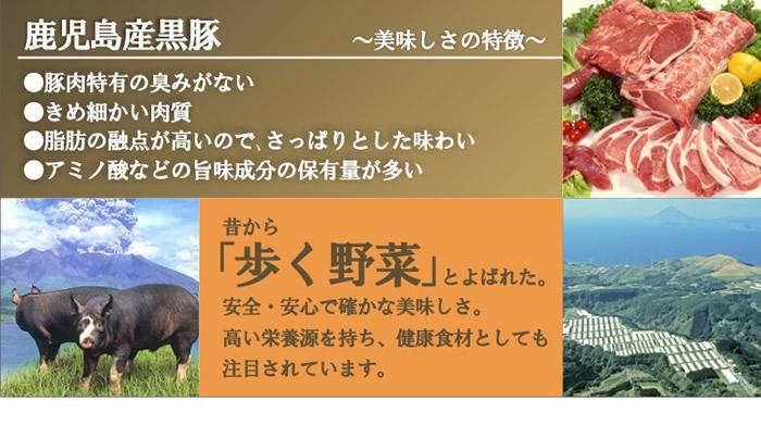 鹿児島県産黒豚が極旨な理由は、「豚肉特有の臭みがない」「きめ細かい肉質」「脂肪の融点が高いので、さっぱりとした味わい」「アミノ酸などの旨味成分の保有量が多い」点にあります。昔から「歩く野菜」と呼ばれていました。