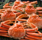 ボイルズワイ蟹3kg