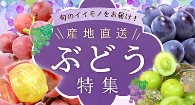 """旬の""""イイモノ""""をお届け! 産地直送「ぶどう」リレー!"""
