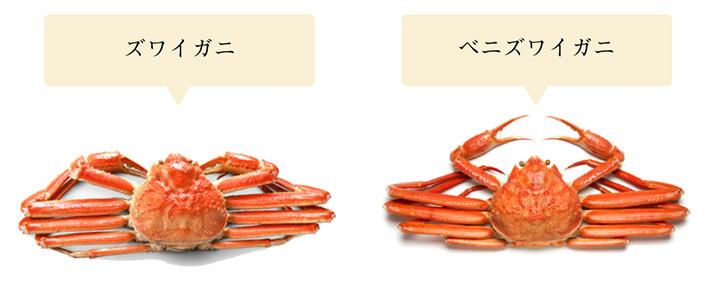 【図解】ズワイガニの旬・由来と食べ方(茹で方・さばき方 ...