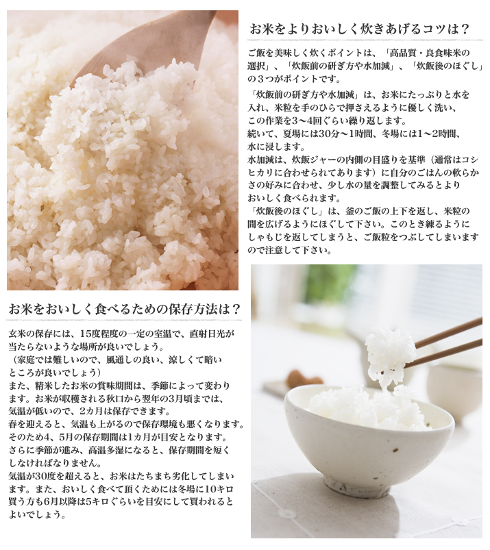 お米の良い保存方法