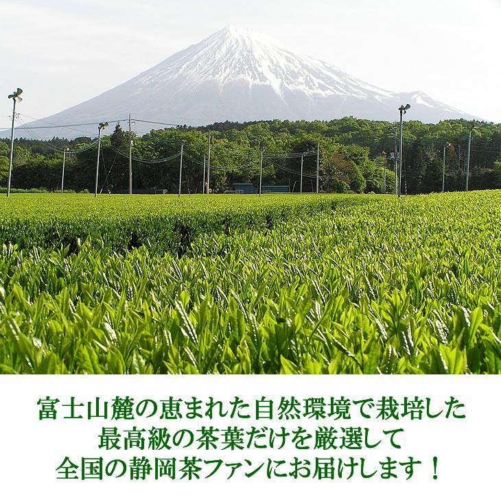 送料無料 深むし茶 緑茶 富士山ろく 富士園 日本茶