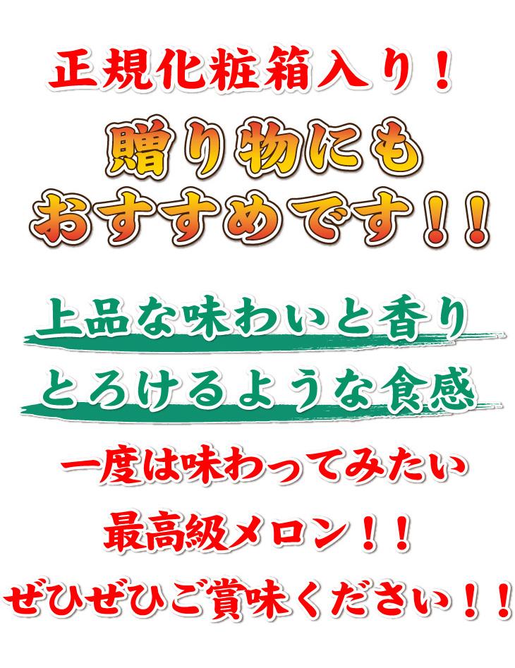アローマメロン 静岡県 送料無料 通販 お取り寄せ ギフト 贈答用