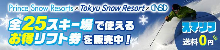 プリンス×東急×NSD 共通1日券