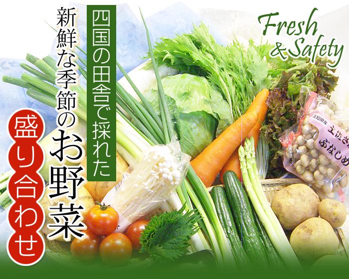 四国の田舎で採れた新鮮な季節のお野菜盛り合わせ