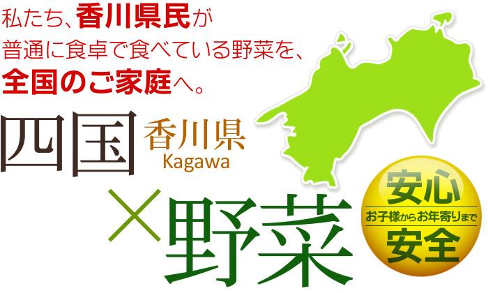 香川県から全国のご家庭へ