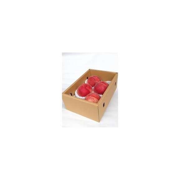 送料無料 山梨県の農家直送 最高級品 厳選 よろこばれる桃 1.5kg箱02