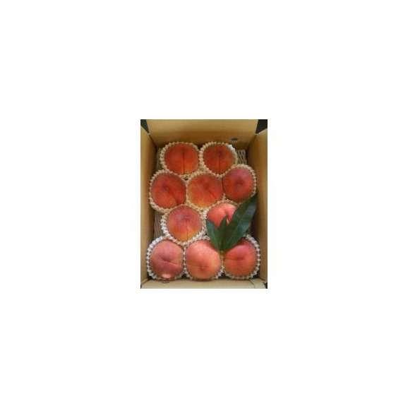 送料無料 山梨県笛吹市の農家直送 特秀品の桃 3kg箱02