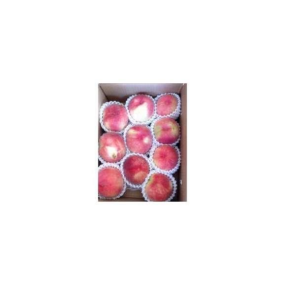 送料無料 山梨県笛吹市の農家直送 家庭用の桃 3kg箱02