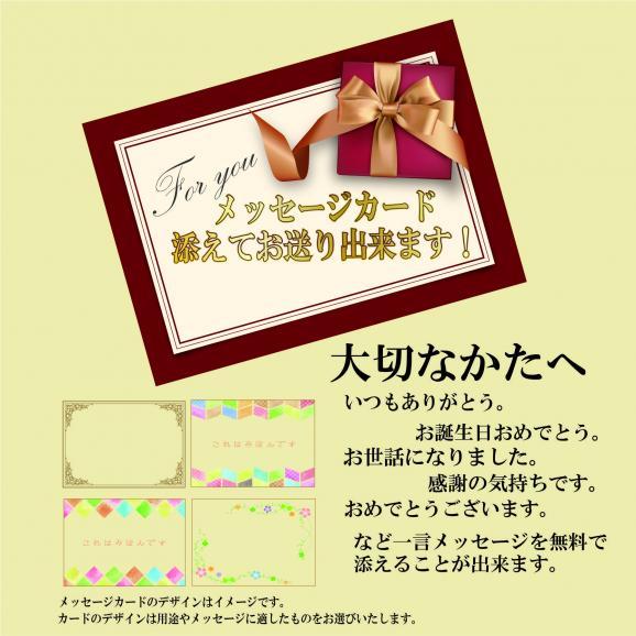 WEB限定【麺屋武蔵】チャーシュー&角煮ギフトセット06