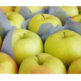青森県を代表する黄色りんご。
