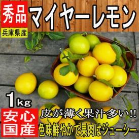 【兵庫県淡路島産】秀品 マイヤーレモン ノーワックス 防腐剤未使用 約1kg