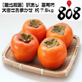 【送料無料】【産地厳選】訳あり 富有柿 大きさおまかせ 約7.5kg (北海道沖縄別途送料加算)