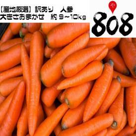 【送料無料】【産地厳選】訳あり 低農薬人参 大きさおまかせ 約9~10kg(北海道沖縄別途送料加算)