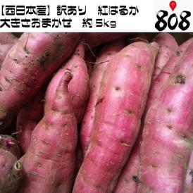 【送料無料】【西日本産】訳あり 紅はるか 大きさおまかせ 約5kg(北海道沖縄別途送料加算)