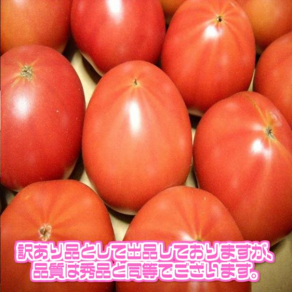 【送料無料】【西日本産】訳あり 桃太郎トマト 大きさおまかせ 約4kg(北海道沖縄別途送料加算)04