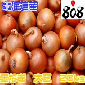 【翌日お届け】【送料無料】【北海道産】大玉玉ねぎ L~2Lサイズ 約20kg