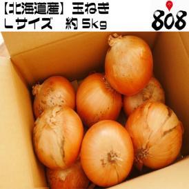 【送料無料】【北海道産】玉ねぎ Lサイズ 約5kg(北海道沖縄別途送料加算)