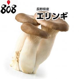 【長野県産】エリンギ 1パック約100g【野菜詰め合わせセットと同梱で送料無料】【送料別】