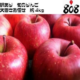 【翌日お届け】【送料無料】【長野県産】訳あり トキりんご 津軽りんご