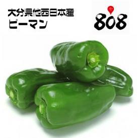 【送料無料】【西日本産】訳あり ピーマン 1箱 約4.5kg(北海道沖縄別途送料加算)