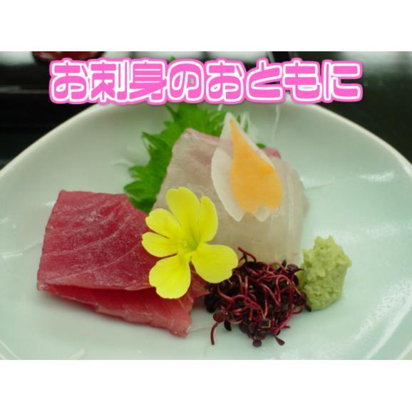 【西日本産】紅立 1パック 約40g【野菜詰め合わせセットと同梱で送料無料】【送料別】02