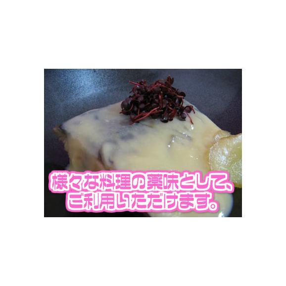 【西日本産】紅立 1パック 約40g【野菜詰め合わせセットと同梱で送料無料】【送料別】03