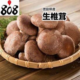【西日本産】生椎茸 1パック 約100g【野菜詰め合わせセットと同梱で送料無料】【送料別】
