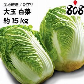 【送料無料】【産地厳選】大玉 白菜  1箱 6玉入り 約15kg(北海道沖縄別途送料加算)