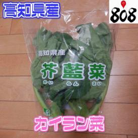 【高知県産】カイラン菜 芥藍菜 1パック【野菜詰め合わせセットと同梱で送料無料】