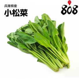 【兵庫県産】小松菜 1束 約200g【野菜詰め合わせセットと同梱で送料無料】【送料別】
