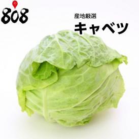 【送料無料】【産地厳選】低農薬 大玉キャベツ 1箱 L~3Lサイズ 約10kg以上(北海道沖縄別途送料加算)